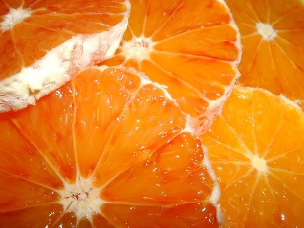Citrus+Fruits9
