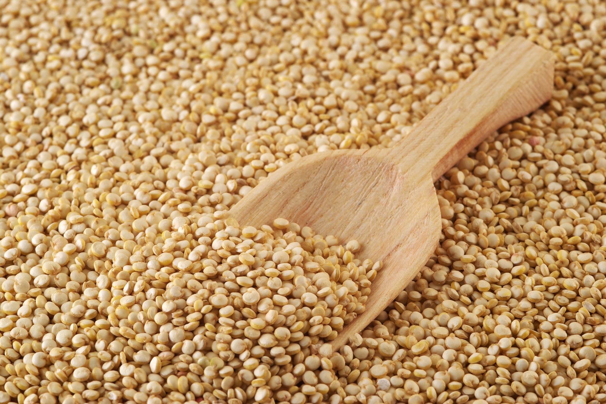 Resultado de imagen para foto de quinoa